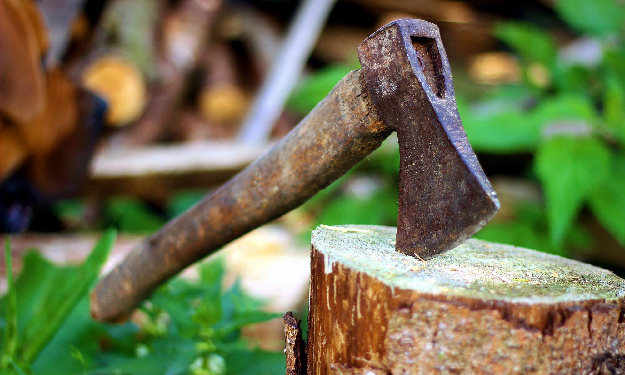 Baumpflege John Larsen